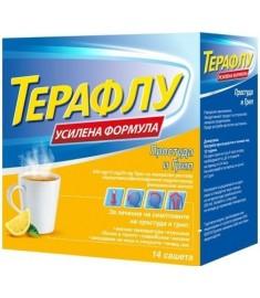 ТЕРАФЛУ ЕКСТРА САШЕТА Х 14